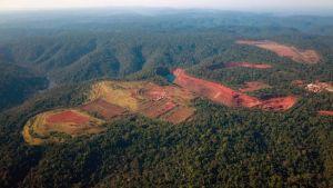 La_gran_deforestacion_latinoamericana