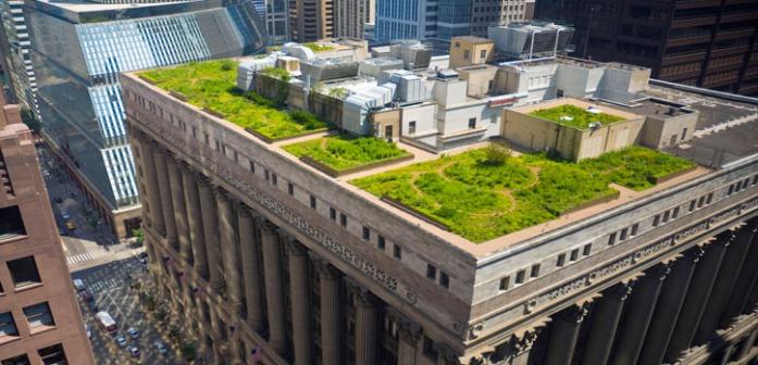drenaje-sostenible-cubiertas-verdes