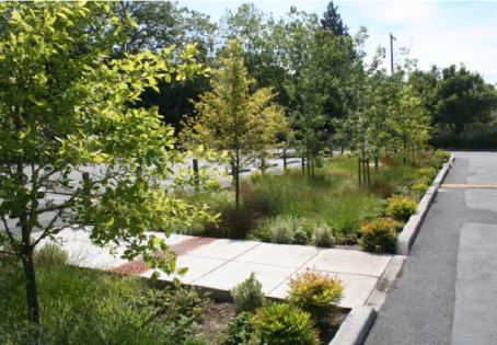 planificacion-jardines