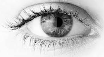 Ensayo-devolver-vista-ceguera